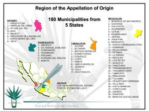 Les villes de la Tequila Designation of Origin